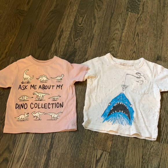 Boys t shirts . Dino + sharks . No defects .